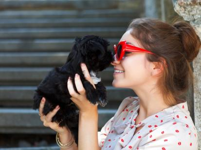 10 ras psów idealnych do małego mieszkania