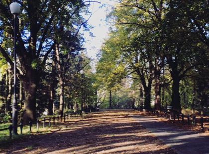 11 dowodów na to, że jesień w mieście może być piękna