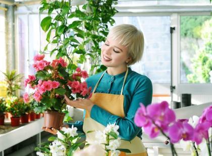12 prawd i mitów o roślinach doniczkowych