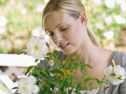 15 pytań o kwiaty w domu