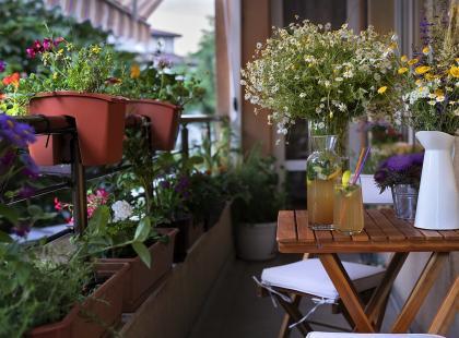 17 gadżetów do ogrodu i na balkon dla każdego miłośnika praktycznych drobiazgów!