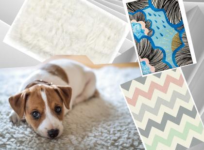 17 najładniejszych dywanów dostępnych w polskich sklepach