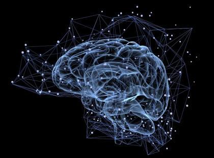 18 marca – Europejski Dzień Mózgu