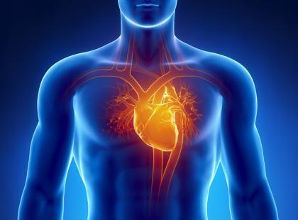 19 marca – Europejski Dzień Zwężenia Zastawki Aortalnej