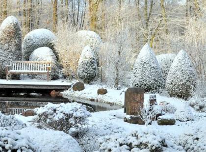 20 ważnych prac, które warto wykonać w zimowym ogrodzie