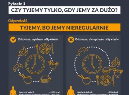 3 ciekawostki na temat otyłości [infografiki]