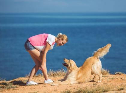 3 proste sztuczki, których możesz nauczyć psa