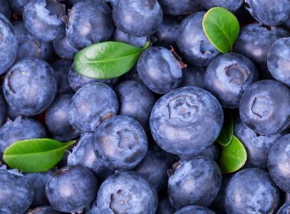 30 pomysłów na dania i desery z jagód
