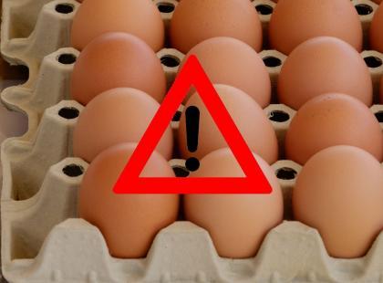 40 tysięcy skażonych jaj trafiło do Polski z Niemiec!