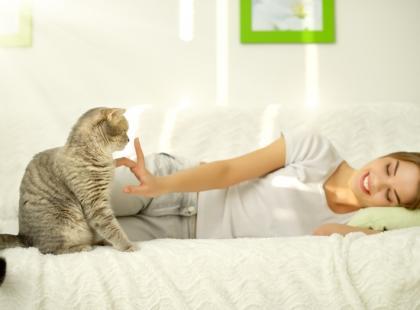 5 błędów w wychowaniu kotów