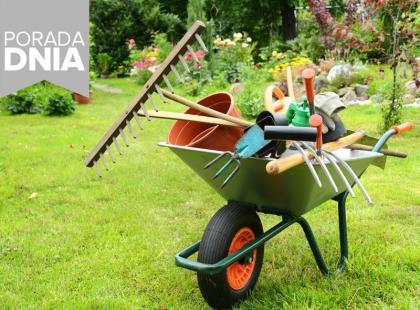 5 najważniejszych porad doświadczonego ogrodnika