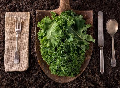 5 pomysłów na dietetyczne dania z jarmużem