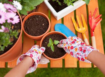 5 prac w ogrodzie, które musisz wykonać na wiosnę