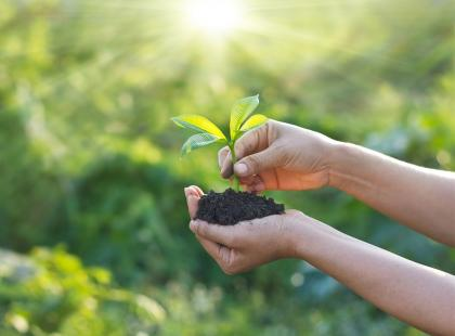 5 prostych sposobów na to, by być eko każdego dnia!