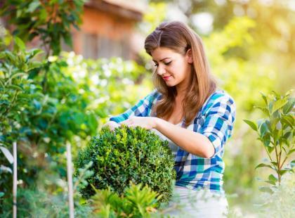 5 roślin, które potrafią się ukryć