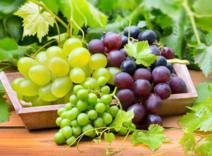6 najpopularniejszych rodzajów winogron