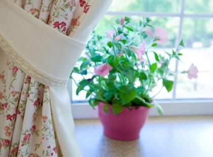 6 sposobów, by zabezpieczyć kwiaty przed wyjazdem na urlop