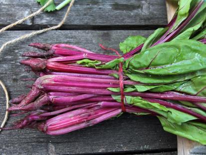 8 wiosennych przepisów na dania z botwinką