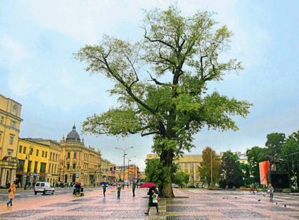 9 powodów, dla których warto odwiedzić Lublin