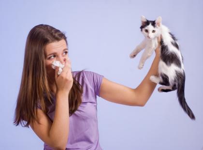 Alergia – jak ją rozpoznać?