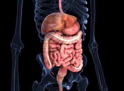 Anoskopia, rektoskopia i kolonoskopia – badania jelita i odbytnicy