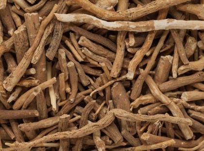 Ashwagandha – czym jest i jak ją jeść?