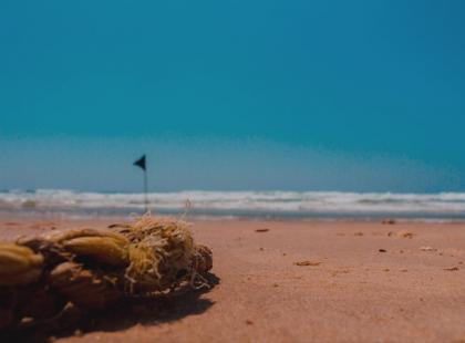 Atak nożownika na plaży w Egipcie. Wśród rannych jest Polka
