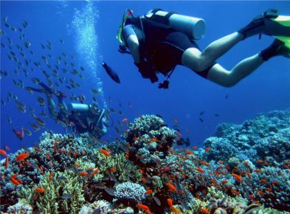 Australia i Oceania - jak przygotować się do wyprawy?