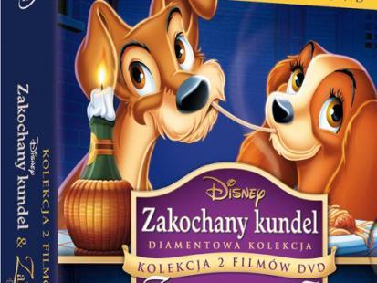 Bajka Zakochany kundel na DVD