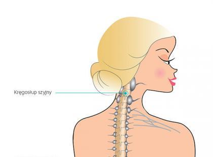 Ból kręgosłupa – zdiagnozuj się! [interaktywna grafika]
