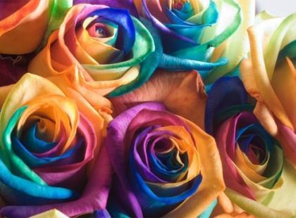 Bukiet tęczowych róż