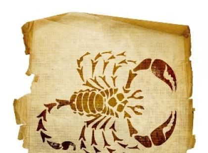 Cała prawda o Skorpionach (23 października – 21 listopada)