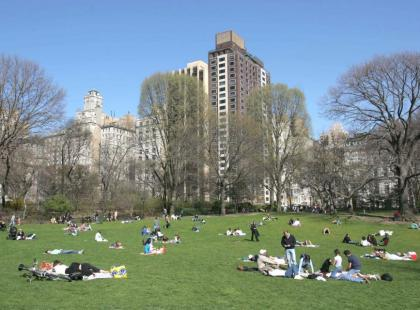 Central Park - Oaza w Nowym Jorku