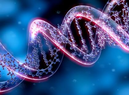 Chimera – osoba o dwóch różnych kodach DNA