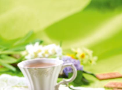 Ciasto-przekładaniec z herbatników bez pieczenia