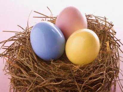 Co musisz wiedzieć o jajkach