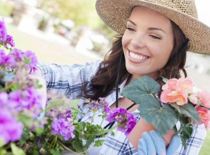 Co musisz zrobić w sierpniu w ogrodzie i na balkonie?