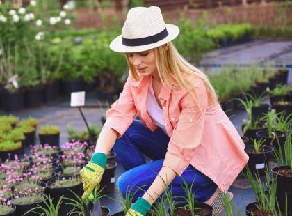 Co musisz zrobić we wrześniu w ogrodzie i na balkonie?
