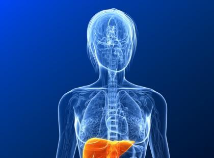 Co zawierają leki wspomagające pracę wątroby?