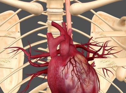 Co zwiększa ryzyko zachorowania na choroby serca?