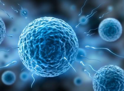 Coraz więcej kobiet leczących się onkologicznie mrozi swoje komórki jajowe