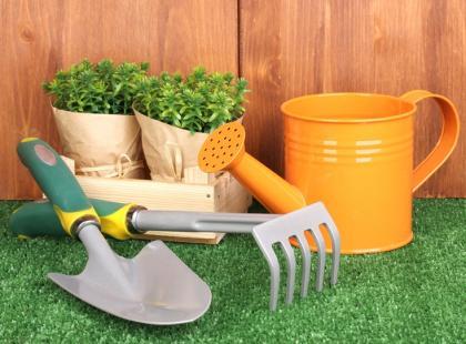 Czas okryć rośliny - jak to zrobić najlepiej?