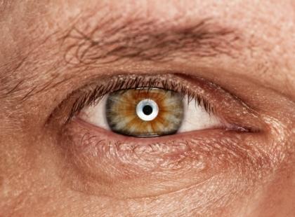 Czopki i pręciki – podstawa wzroku