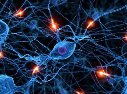 Czy budowa mózgu jest przyczyną uzależnień?