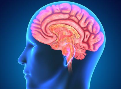 Czy magnez wspomaga pamięć i koncentrację?