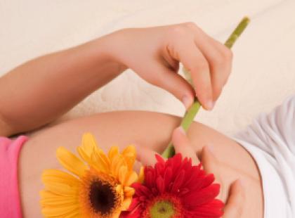 Czy w ciąży można pić melisę?