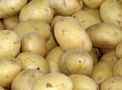Czy w Maroku jada się ziemniaki?