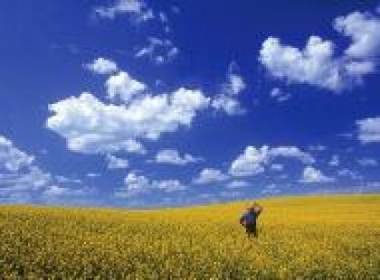 Czy wiesz dlaczego niebo jest niebieskie?