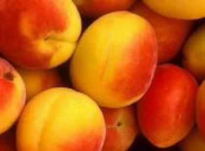 Czy wiesz jak przygotować brzoskwinie w sosie królewskim?