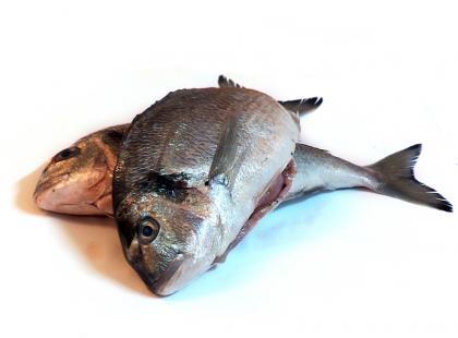 Czy wiesz jak przygotować krążki z ryby z chrzanem?